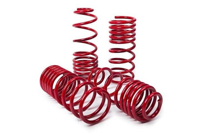 Lowering Springs Mercedes-Benz Citan Mixto (415)